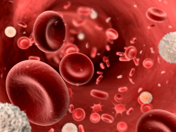 Hémochromatose : semaine de sensibilisation au dépistage - mai 2012