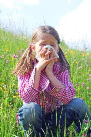 Allergies : retour du pollen