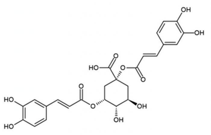 acide dycaféyquinique