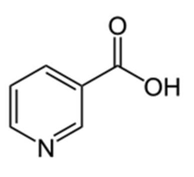 vitamine PP, vitamine B3, niacine