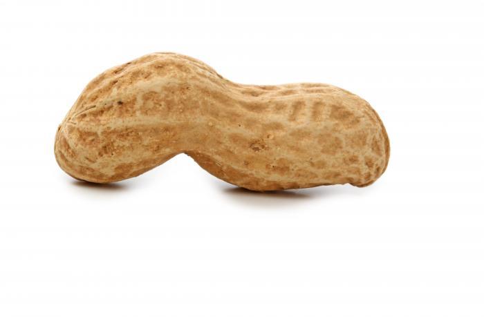cacahuète hypo allergisante