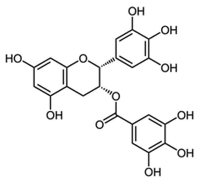 EGCG - Epigallocatéchine gallate