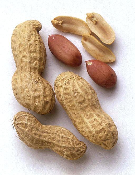coque d'arachide