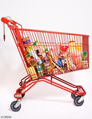 Hard-discount : caddie , supermarchés, surconsommation, obésité, surpoids, éducation