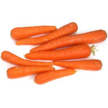 macérât huileux bio de carotte