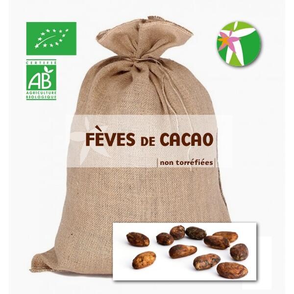 Vrac fèves de cacao non torréfiées bio