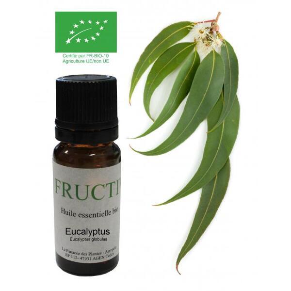 Eucalyptus globulus bio - huile essentielle bio - 10 ml