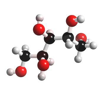 xylitol naturel de bouleau : molécule
