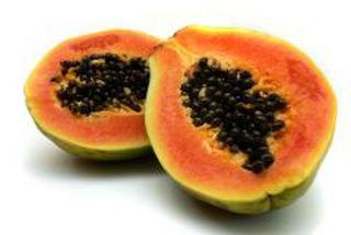 graine de papaye bio