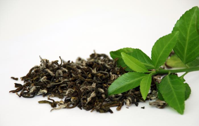 Thé chinois Lipton - pesticides