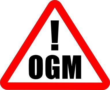 OGM, danger, organisme, génétiquement, modifié, attention, risques