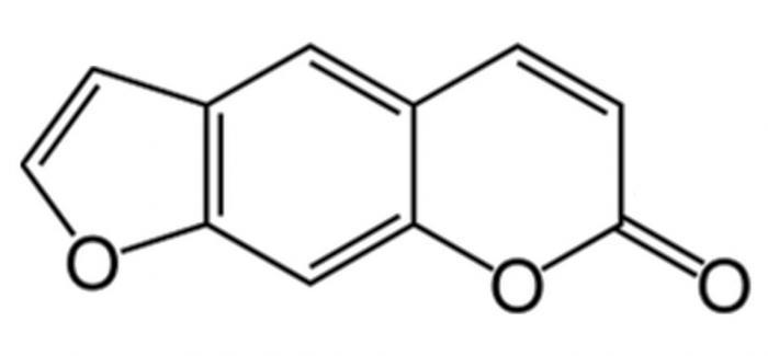 furocoumarine - furanocoumarine - psoralène