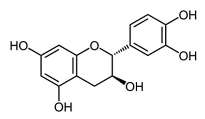 catéchine