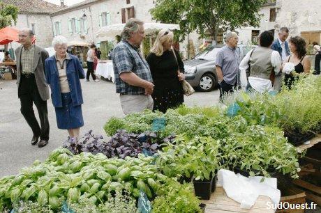 Festival de l'ortie et de la nature (lot et garonne)