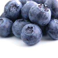 Poudre naturelle de fruits Fruitis - Myrtille 100g