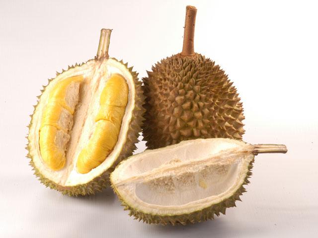 durian bio