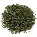 photo de la cannelle Cinnamonum zeylanicum