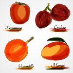 kaki, litchi, grenadelle et mangue